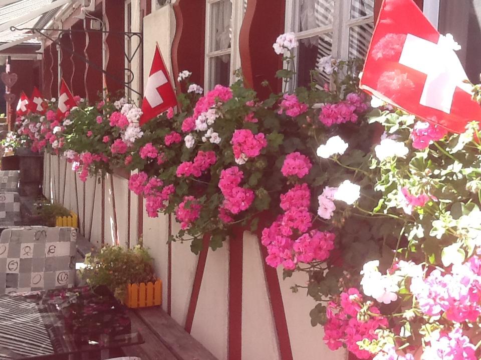 1. August-Dekoration Garten