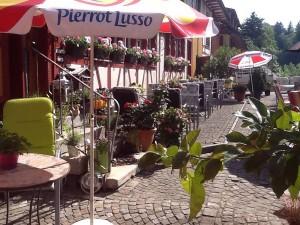 Gartenwirtschaft-Freihof-Schmidrüti-im-Juni-2013b
